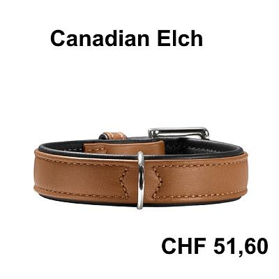 everything-dogs-little-cats-canadianelch600chf.jpg