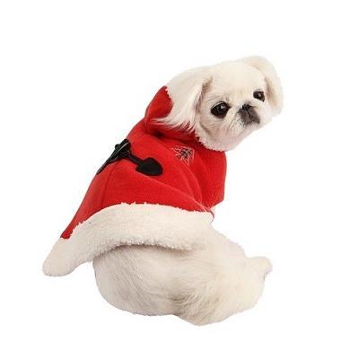 everything-dogs-little-cats-santacape.jpg