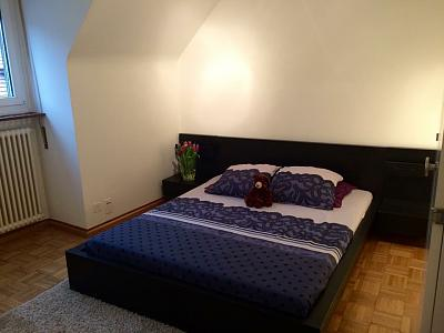 renting-apartment-per-days-riehen-basel-image.jpg