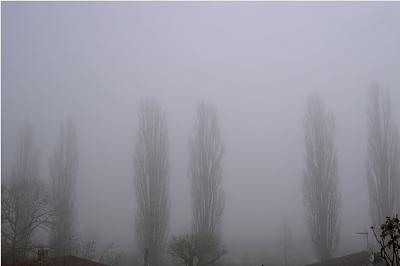weather-fog.jpg