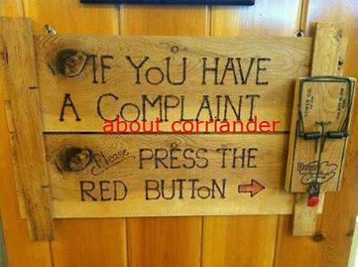 coriander-ruins-my-life-complain.jpg