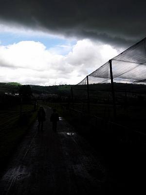 weather-hailbaar2.jpg
