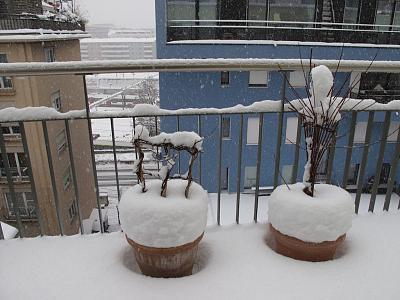 weather-snow-2.jpg