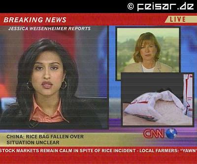 american-blonde-marry-swiss-guard-breakingnews.jpg
