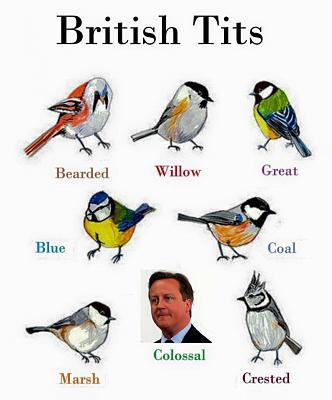 brexit-referendum-thread-potential-consequences-gb-eu-brits-ch-image.jpg