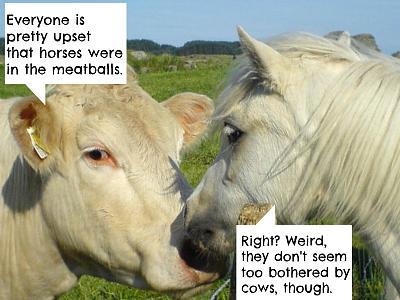 love-hate-relationship-ikea-horsecowlove.jpg
