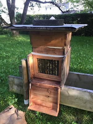 beekeepers-image2.jpg