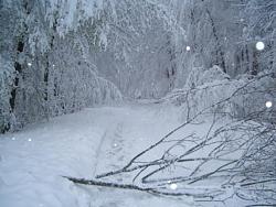 post-your-photos-switzerland-sauvablin-winter.jpg