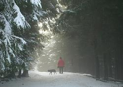 post-your-photos-switzerland-misty-zugerberg.jpg