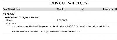 coronavirus-screenshot-2020-11-19-14.50.13.png