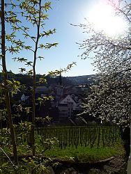 post-your-photos-switzerland-5596282064_ace5a3f03e.jpg