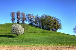 post-your-photos-switzerland-img_4112_3_4_tonemapped.jpg