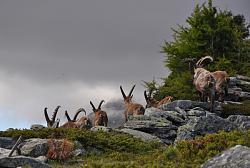 post-your-photos-switzerland-600_33305271.jpeg