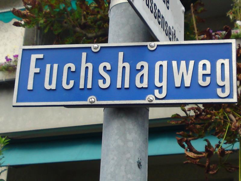 weird signposts