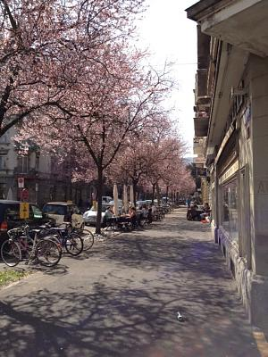 post-your-photos-switzerland-bertastrasse.jpg