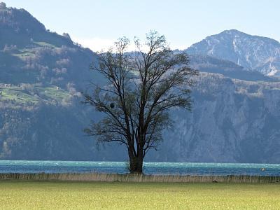 post-your-photos-switzerland-120429-r-tli-fl-elen-67.jpg
