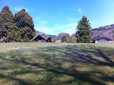 post-your-photos-switzerland-thunsee4.jpg