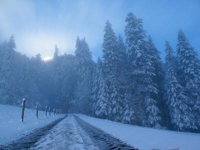 post-your-photos-switzerland-tumblr_mwngaih6gd1rldw9fo1_500.jpg