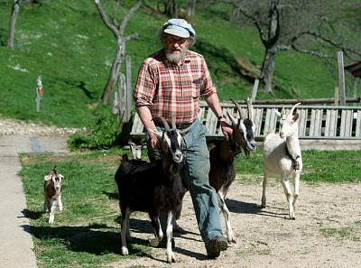 dating-swiss-men-swiss-farmer-goats.jpg