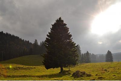 post-your-photos-switzerland-st-cergue.jpg