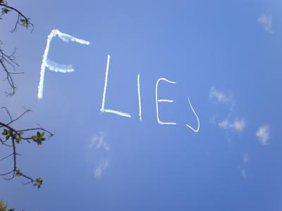 go-outside-right-now-look-sky-flies.jpg