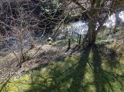 post-your-photos-switzerland-b95021b7-4b2a-4850-9151-a7324c6b05c1.jpg