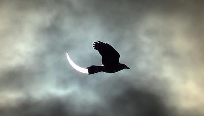 solar-eclipse-e3.jpg