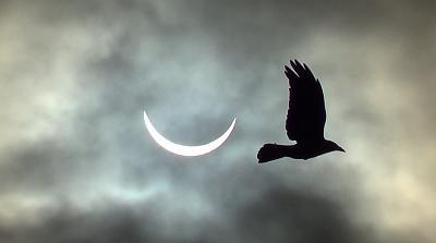 solar-eclipse-e4.jpg