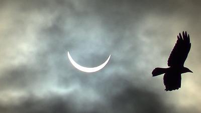 solar-eclipse-e5.jpg