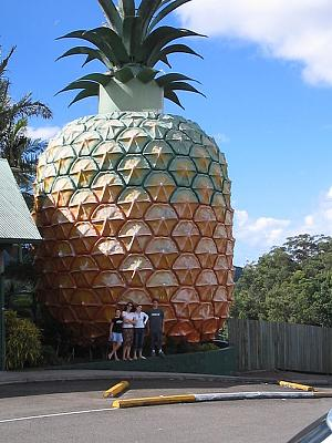 private-dentist-ripped-off-my-parents-500px-giantpineapplenambour.jpg