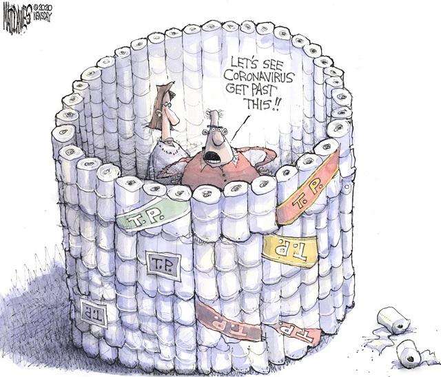 Name:  Toilet roll barrier.jpg Views: 1605 Size:  145.6 KB