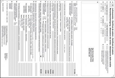 ahv-2-saule-tax-deduction-lohnausweis.png