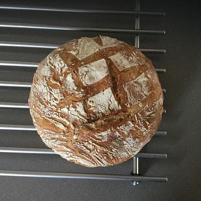 anyone-ever-made-sourdough-bread-image.jpg