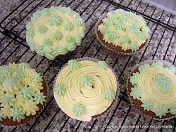 post-photos-what-you-cook-bake-switzerland-velvet-cupcakes-02.jpg