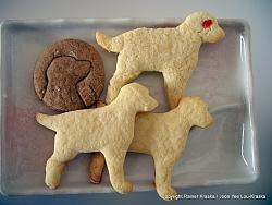 post-photos-what-you-cook-bake-switzerland-lab-cookies-2010-christmas-01.jpg