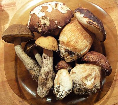 post-photos-what-you-cook-bake-switzerland-sdsc04824.jpg