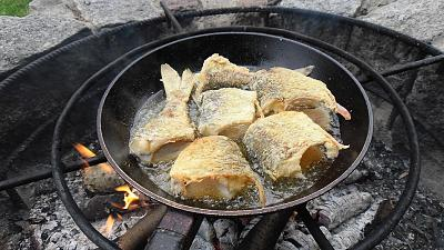 post-photos-what-you-cook-bake-switzerland-fried-roach.jpg