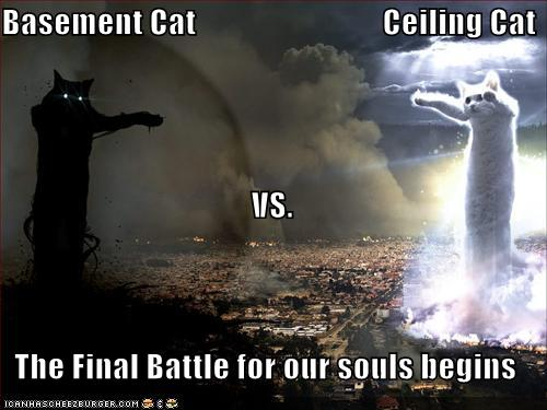 32454d1316164835-rep-whores-funny-pictures-basement-cat-vs-ceiling-cat.jpg
