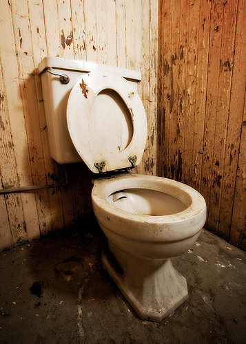 Name:  Need-a-new-toilet.jpg Views: 328 Size:  134.6 KB