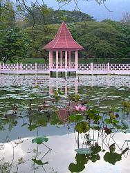 postcards-your-birth-place-lake-garden_004.jpg