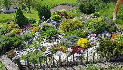 how-about-gardening-thread-20160521_164606.jpg