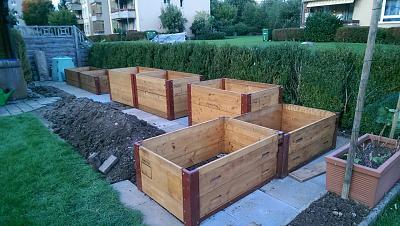 how-about-gardening-thread-814503111_34068.jpg