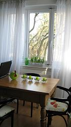 charming-2-5-room-flat-rent-wollishofen-img_0294.jpg