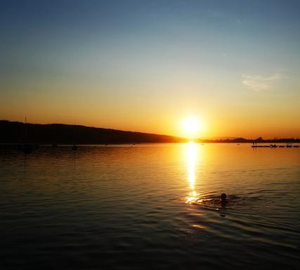 Name:  sunset 1 7-23-19(2).jpg Views: 85 Size:  45.0 KB