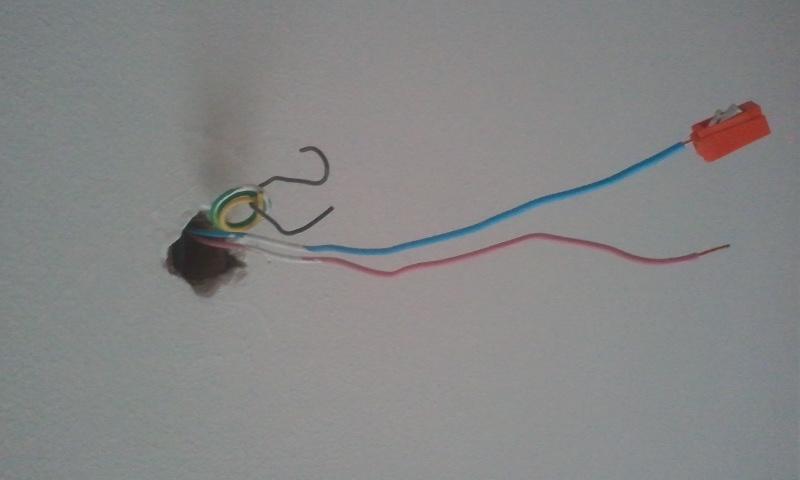 Surprising Ceiling Light Wire Colours English Forum Switzerland Wiring Cloud Venetioscosaoduqqnet