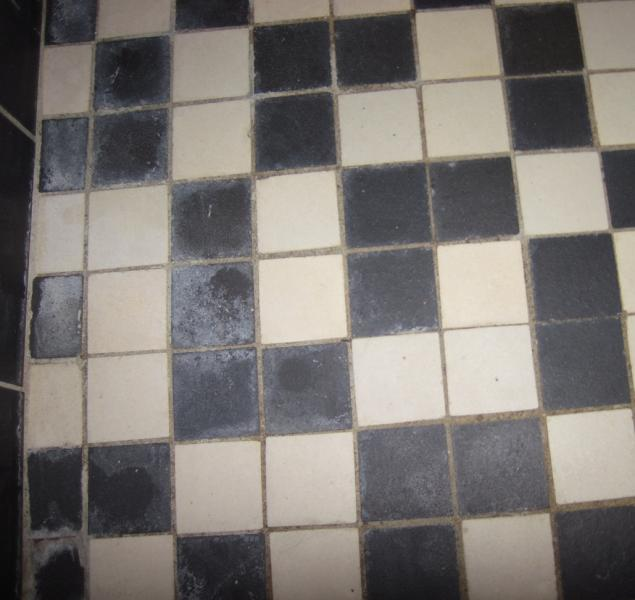 Bathroom Floor Cleaner To Remove Stubborn Stains English Forum - How to clean bathroom floor stains