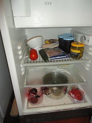 replacement-glass-fridge-k-hlschrank.jpg