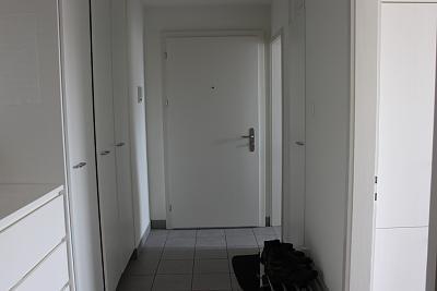 modern-bright-quiet-apartment-near-albisrieden-perfect-uetliberg-view-img_3320.jpg