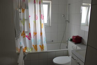 modern-bright-quiet-apartment-near-albisrieden-perfect-uetliberg-view-img_3328.jpg