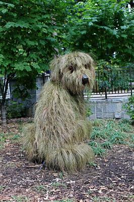 how-about-gardening-thread-dog.jpg
